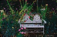 """Penny's Garden - Beaver Lake,"" original fine art photograph by David Barnett"