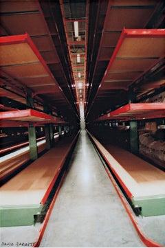 """""""Steinhafel's Warehouse Series: Steel Forest,"""" original photo by David Barnett"""