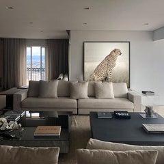 David Burdeny - Cheetah Profile (Photograph)