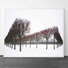 David Burdeny - Winter Red, Pushkin, Russia