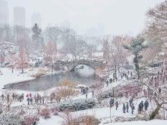 December Snow, Central Park, New York City