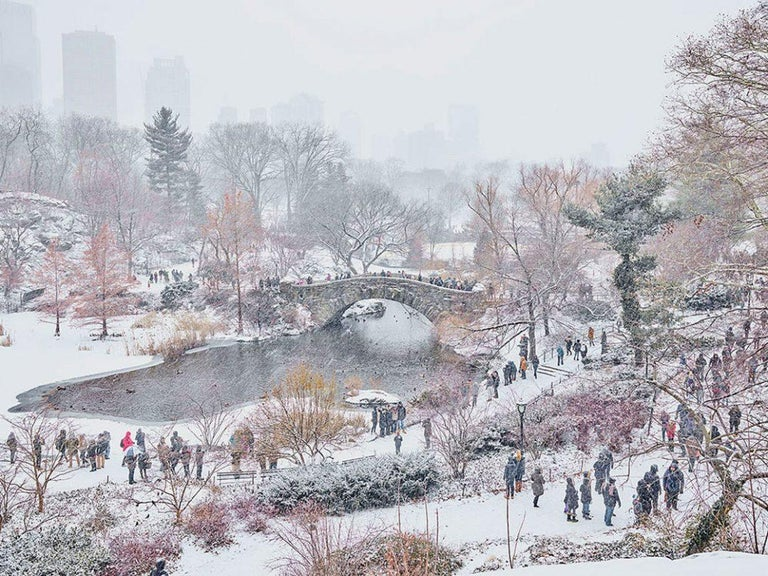 David Burdeny Color Photograph - December Snow, Central Park, New York City