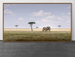 Elephant Pair, Amboseli, Kenya, Africa