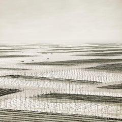 Mesh, South China Sea, Traverse, 2011