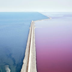 Photosynthetic 2, Great Salt Lake, UT- Framed 59 x 59 inch color photograph