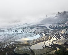 Rice Terraces, (Duoyishu), Yunnan, China