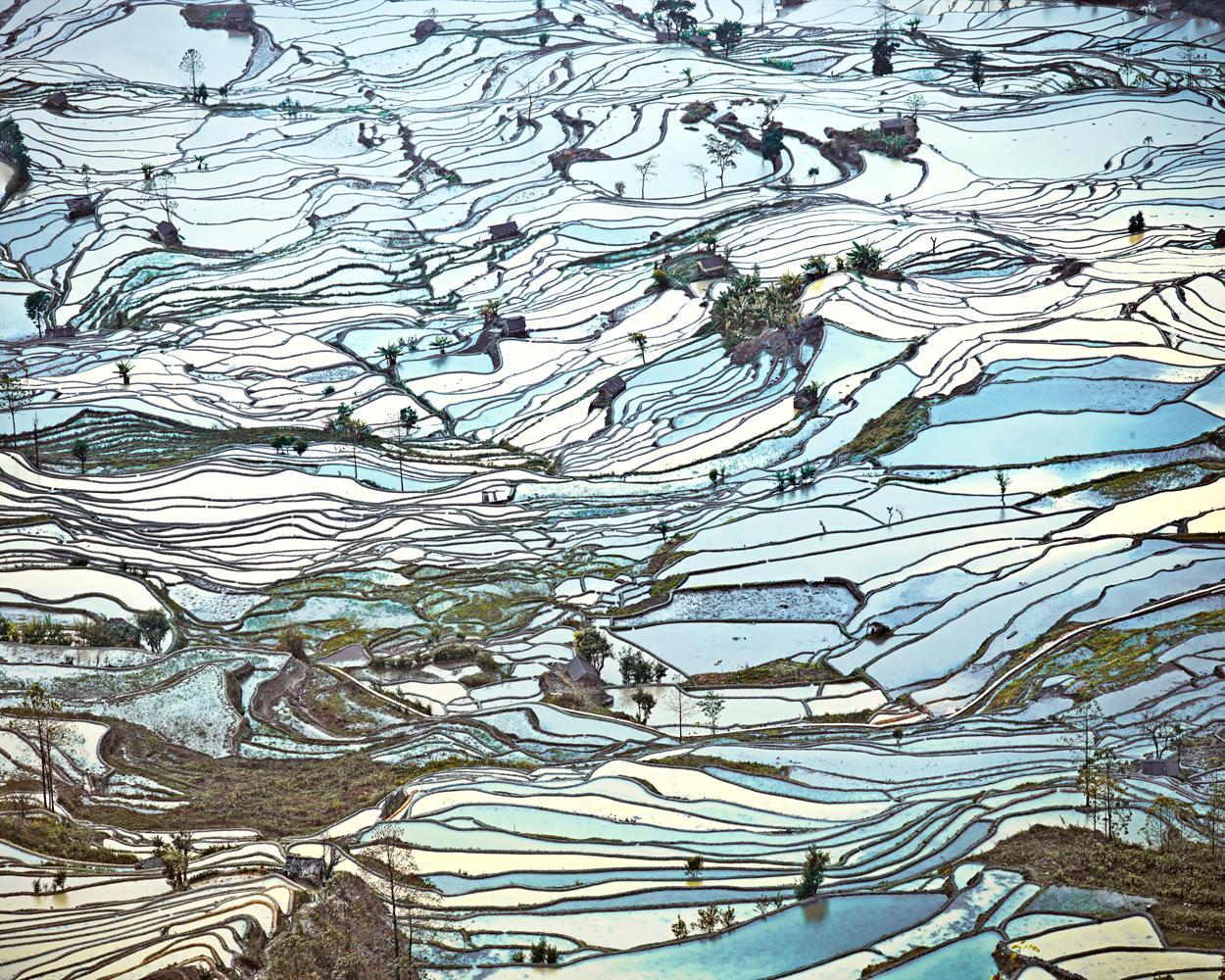 Rice Terraces, (Laohuzui II), Yunnan, China