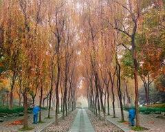 Sweepers, West Lake, Hangzhou, China
