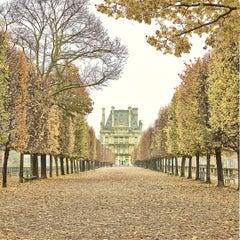 Tuileries Garden, Paris, France (Color Photography)