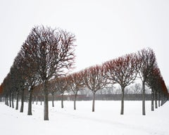 Winter Red,  Catherine Palace, Pushkin, Russia