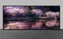 Blossom, Tokyo