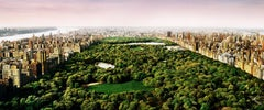David Drebin, Dreams of Central Park