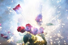 David Drebin, Fire And Roses