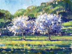 Apple Trees in Bloom - original tree nature landscape oil painting contemporary