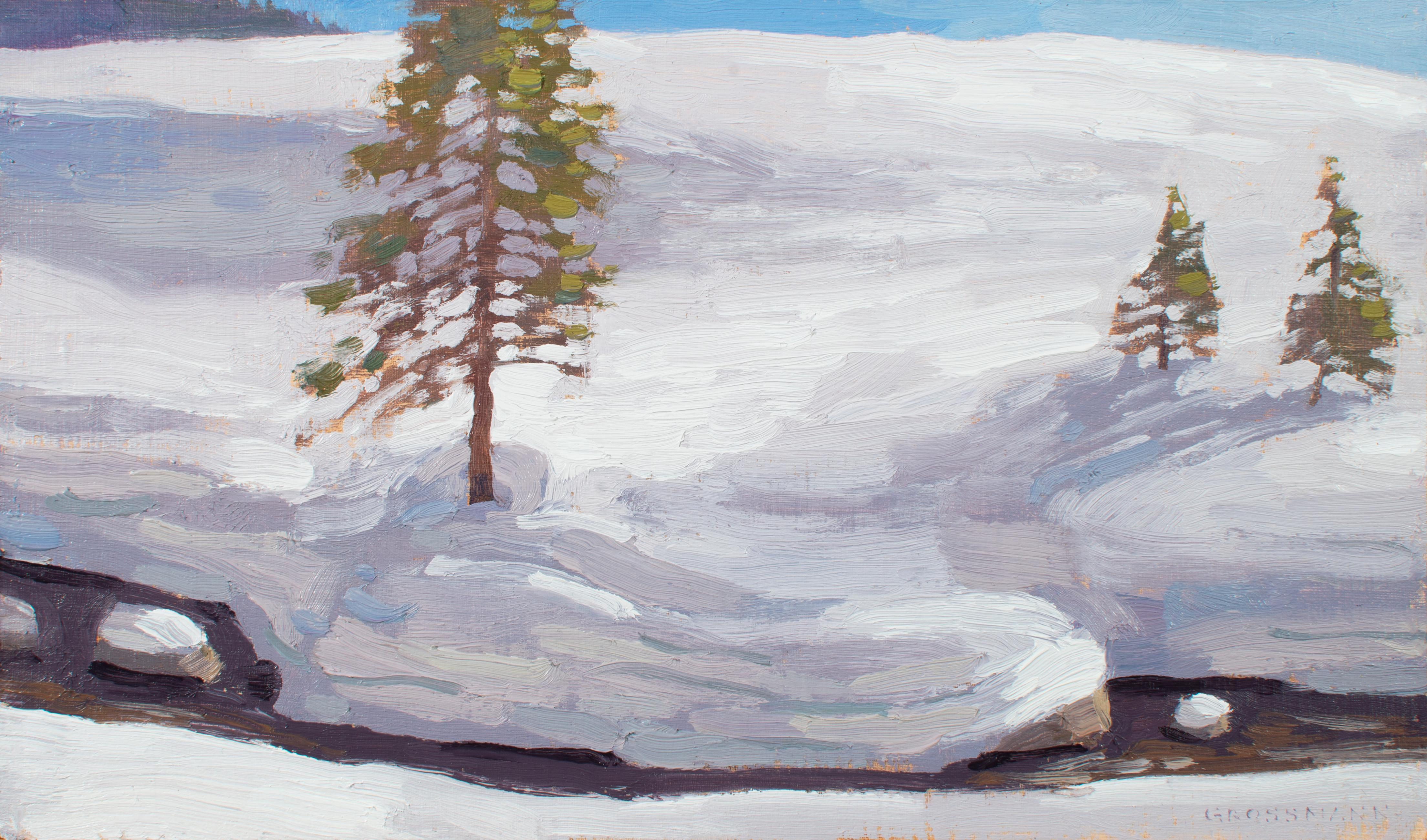 """""""Snow Shapes and Pine Trees Beside Mesa Creek"""", Oil Painting"""