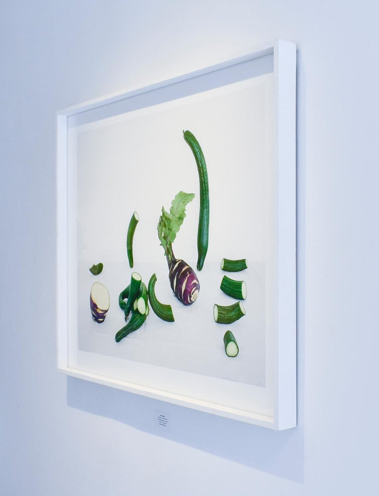 Cucumbers & Kohlrabi (Contemporary Color Still Life of Vegetables)  2