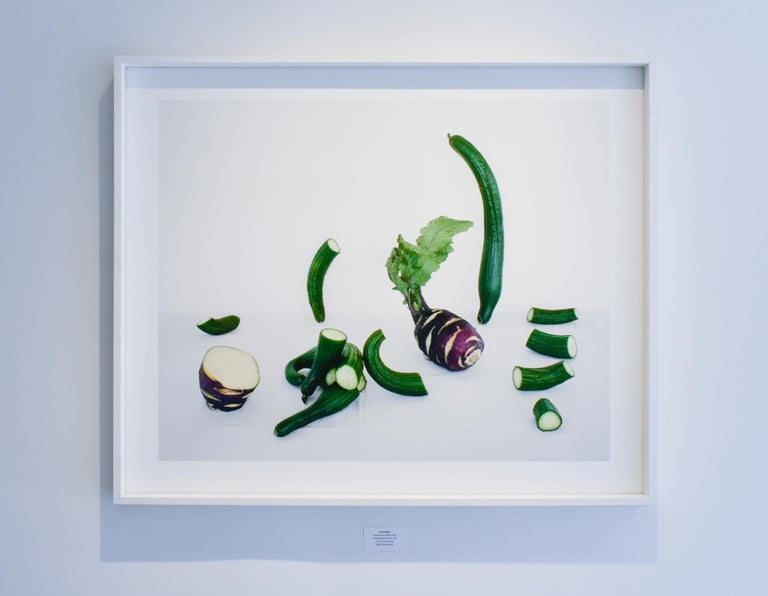 Cucumbers & Kohlrabi (Contemporary Color Still Life of Vegetables)  3