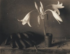 Lilies & Plantains: Sepia Toned Still Life Photograph of Flowers and Fruit