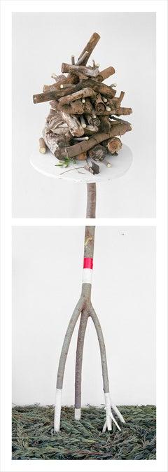Olive Wood & Lavender Greens: Framed Figurative Still Life Photograph