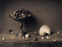 Pecans & Shell (Surrealist Still life Composition, Silver Gelatin Print, Framed)