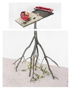 Pomegranates & Walnuts: Framed Still Life Photograph of Fruits & Olive Branches