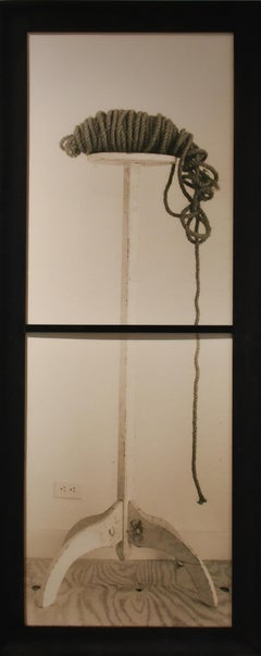 Rope and Plant Stand (Silver Toned Gelatin Print Still Life in Vintage Frame)
