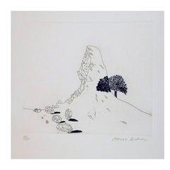 "David Hockney Original Etching, 1969, ""Glass Mountain Shattered"""