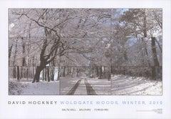 2010 After David Hockney 'Woldgate Woods, Winter' Pop Art United Kingdom Offset
