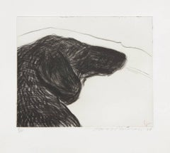 Dog Etching No.6, from Dog Wall