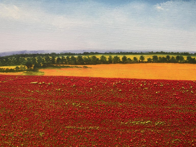 A Sea Of Poppies.   Large Contemporary Landscape Painting For Sale 1
