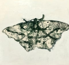Moth Eight, Painting of Insect in Dark Gray, Black on Yellow, Off-white