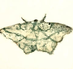 Moth Four, Painting of Winged Insect in Dark Gray, Black on Off-white Background