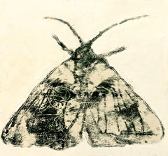 Moth One, Nature Themed Painting of Winged Insect in Dark Gray on Off-white