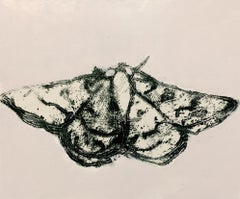 Moth Three, Horizontal Painting of Dark Gray, Black Insect on Cream Background