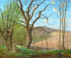 Wild Violets - Landscape, Oil on board, 20th Century