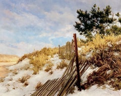 Winter on the Dunes, Fences