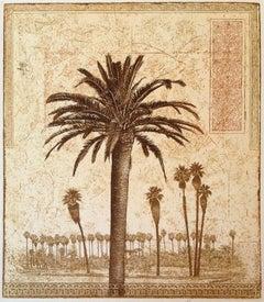 69 Palms