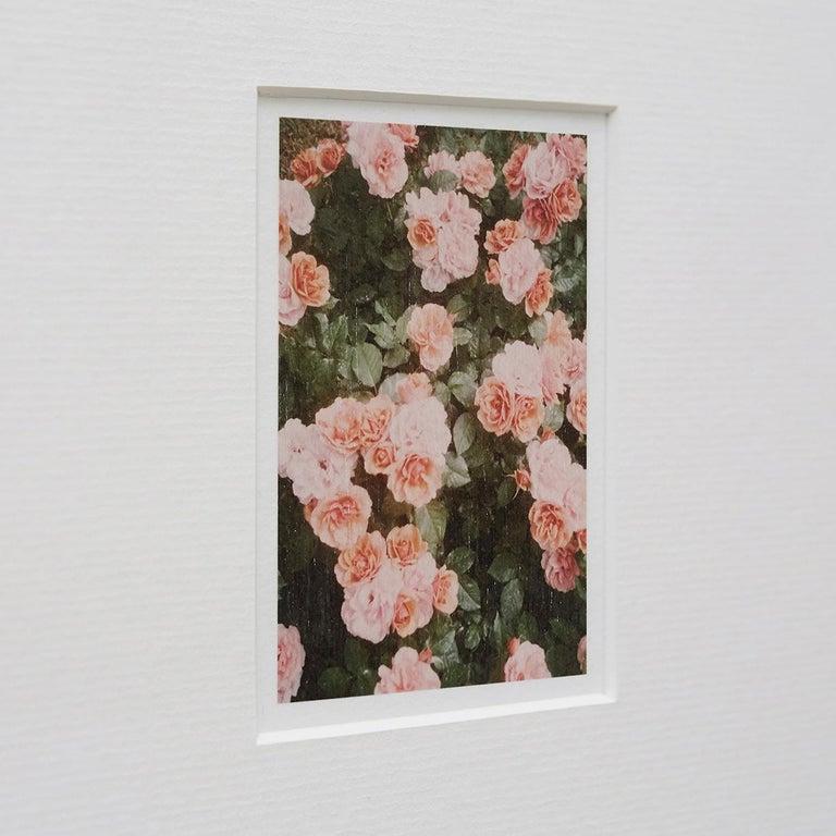 Modern David Urbano The Rose Garden nº 21 For Sale
