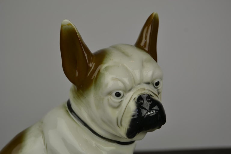 Art Deco Sitzendorf Porcelain French Bulldog Figurine For Sale 6