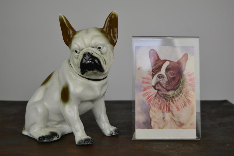 Rare 1930s porcelain French bulldog, Boston Terriër, dog figurine, animal statue.