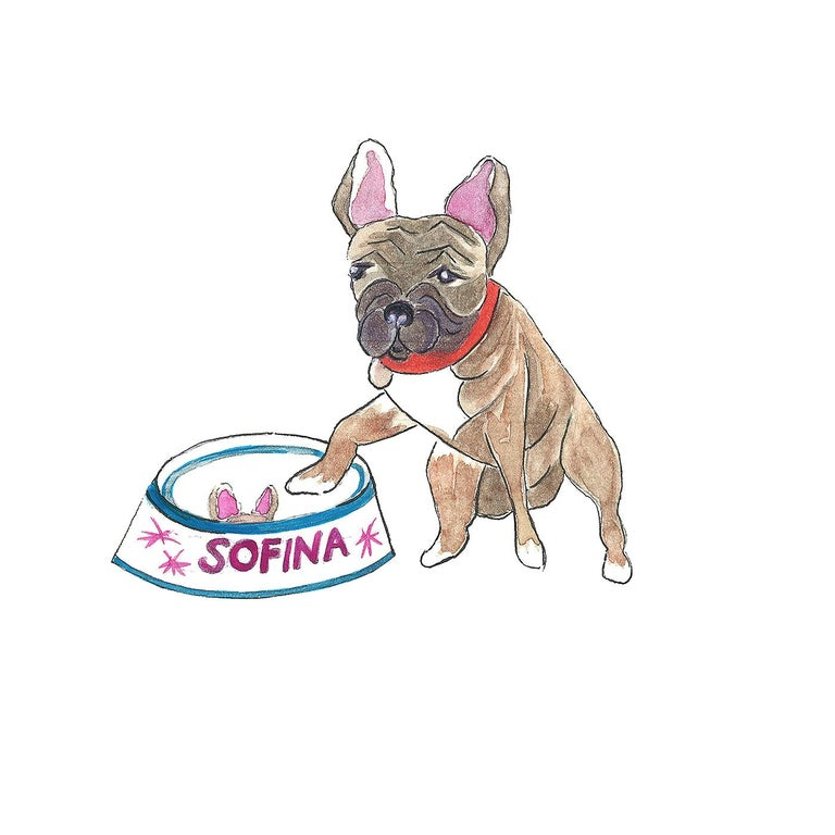 For all dog lovers. Design your own dog bowl with the portrait of your dog and the name. You can choose the color of letterning name and the color of the rim. Please send us the photo of your dog by sending us a message by 1stdibs. The dog bowl will