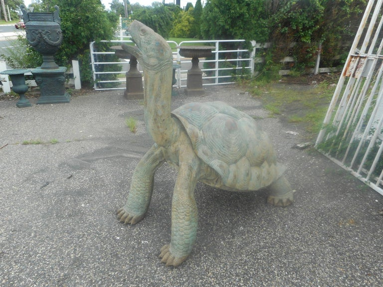 An impressive 63 inch bronze turtle fountain with a long neck and a huge detailed shell. This stunning garden ornament gracefully spills water from the open mouth into a bottom reservoir beneath the turtles feet. A unique cast of an elegant sea