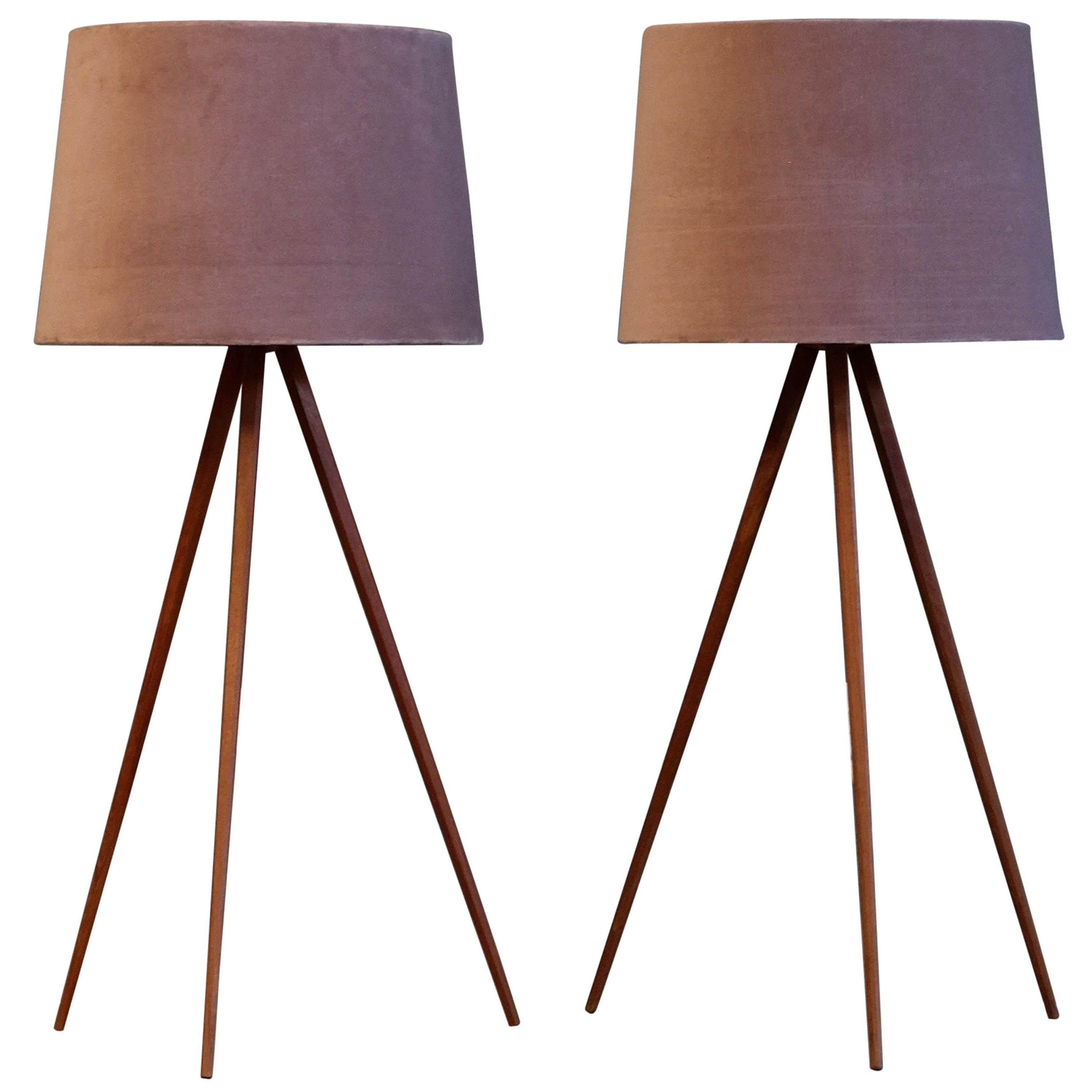 Rare Pair of Swedish Table or Floor Lamps, 1950s