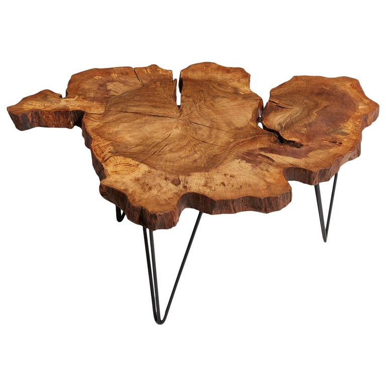 9b42604492f8 Hornbean Tree Live Edge Coffee Table