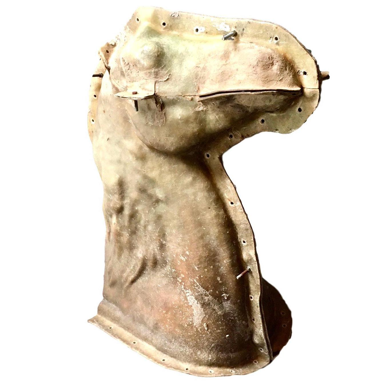 Lifesize Fiberglass Horse Head Mold