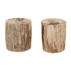 Pair of Petrified Wood Side Tables or Stools in Beautiful Cream and Black Colors