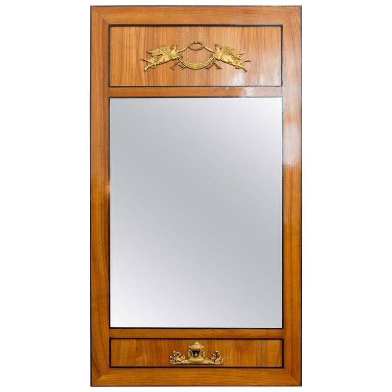 Early 19th Century, Empire Cherry Pillar Mirror For Sale