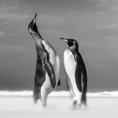 All you need Is Love, Archival Pigment Print, Black and White Photography