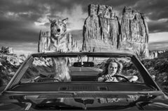 Drive with Cara Delevingne - a wolf and the supermodel sitting in a car