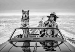 On the road again - the supermodel Cindy Crawford in a car with a wolf